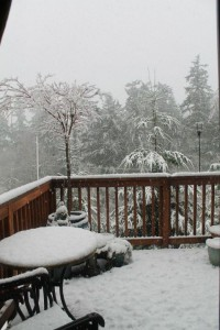 Massive snowstorm heads to Northwest; possibly of largest accumulation of snow in decades