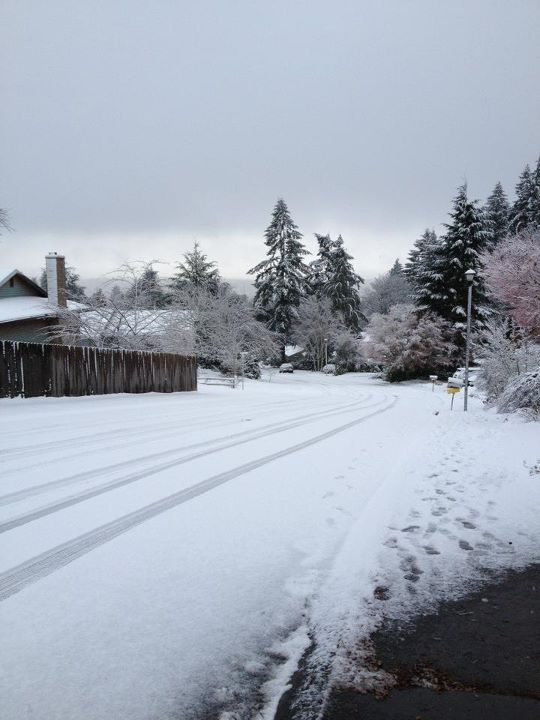 Staying safe in a snowy situation: What to do during West Linn snow days