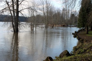 West Linn soaked with five inches of rain in six days