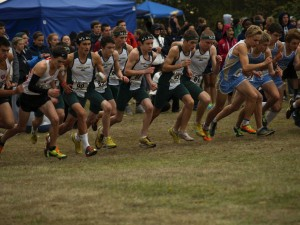 West Linn cross country team wrap up the season in strong fashion
