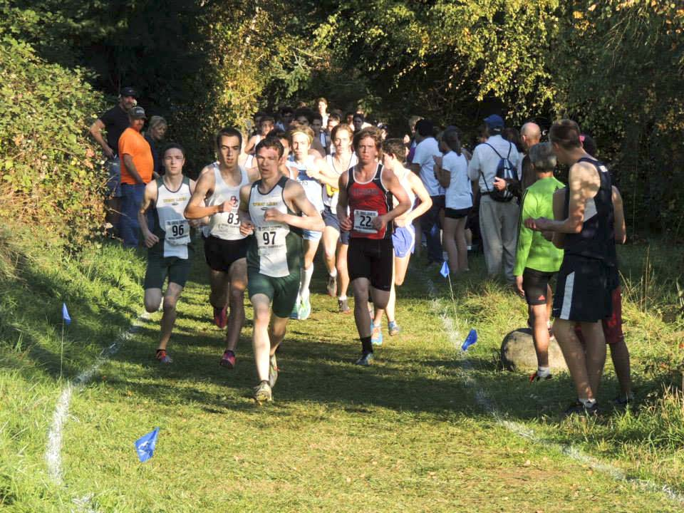 Boys Cross Country Team advances to State