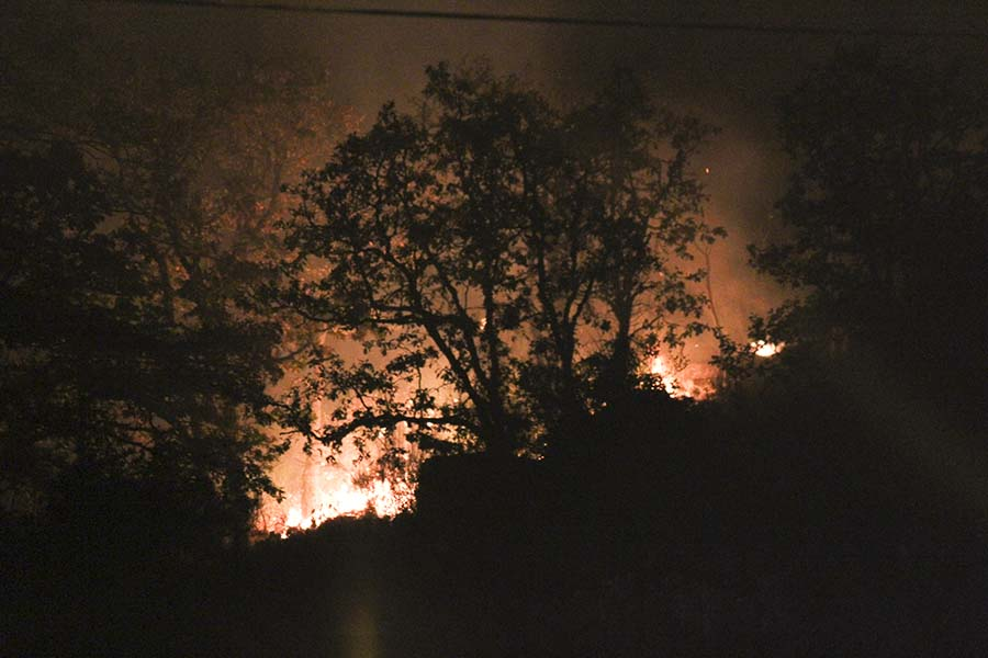 A fire blazes in Camassia Natural Area last night with firefighters on the scene. No students were harmed and the fire was quickly extinguished.