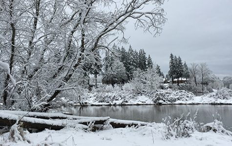 An overwhelming amount of snow piles up around West Linn.