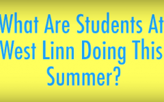VIDEO – What are your summer plans?