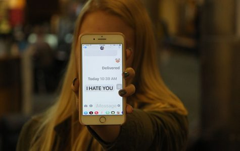 Cyberbullying in the Lion's Den