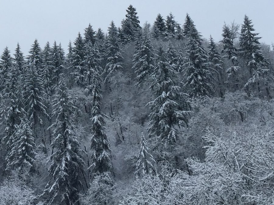 Several+inches+of+snow+blanketed+the+area+multiple+times+last+winter.+The+first+real+measurable+snow+event+appears+to+be+heading+our+way+Tuesday+into+Wednesday.+%28Photo+by+Rory+Bialostosky%29