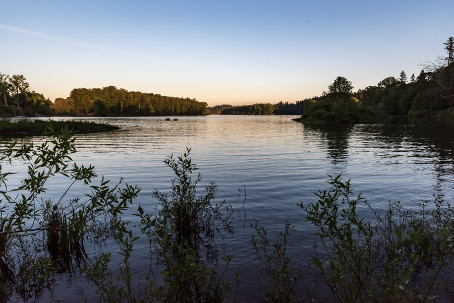 """Some trails in Mary S. Young lead down to the Willamette River. """"My favorite part of the park has to be the riverside."""" Carter Bartley, freshman, said. """"I love going fishing. I could spend all day down there."""""""