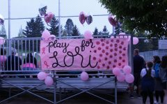 Softball game raises awareness for breast cancer
