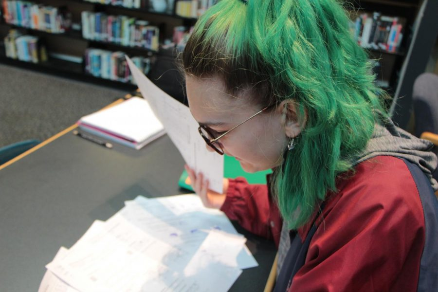 I study for the classes that are hardest for me Ivy Potter, sophomore, said. I prioritize.