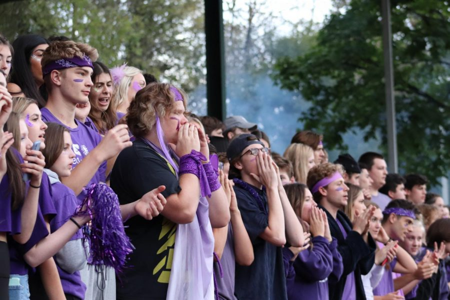 Students cheer on the lions, wearing purple for Childrens Cancer Association.