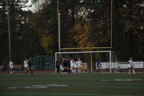 Cheers fill the stands as the Lions score their third goal against the Central Catholic Rams. The score is now 3-1.