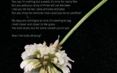 The Bully-original photography and poem by Sienna Reiner