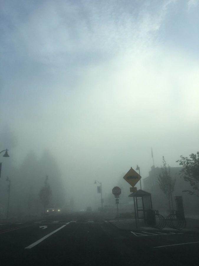 Magic Mystery-original fog photography by Kaelin Kehm