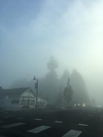 Mystic Magic-original fog photography by Kaelin Kehm